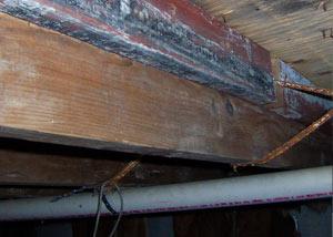 house flood repairs tallahasse